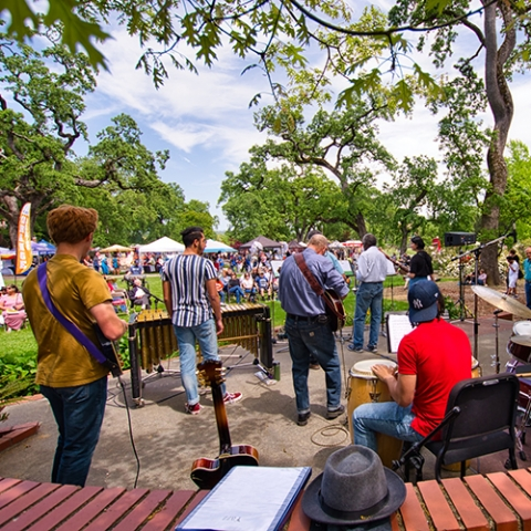 Live music at Day Under the Oaks